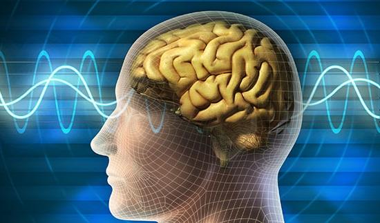 यसरी बदल्न सकिन्छ मानव मस्तिष्कलाई……