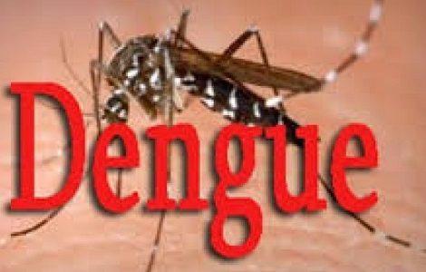 डेंगुबाट करिब ७० हजार व्यक्ति प्रभावित भएको आकलन
