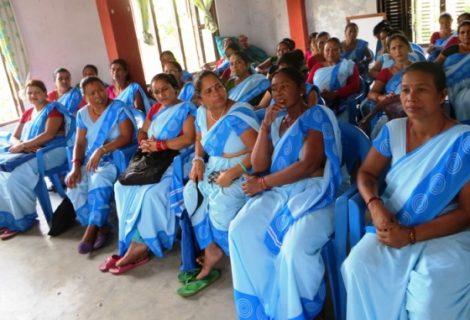 स्वास्थ्य क्षेत्रमा महिलाको दरिलो पकड